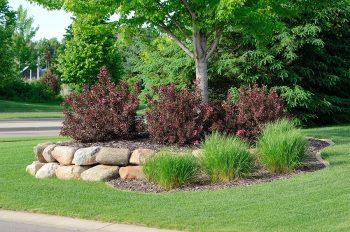planting mulching landscaping