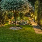 landscaping tips residential areas