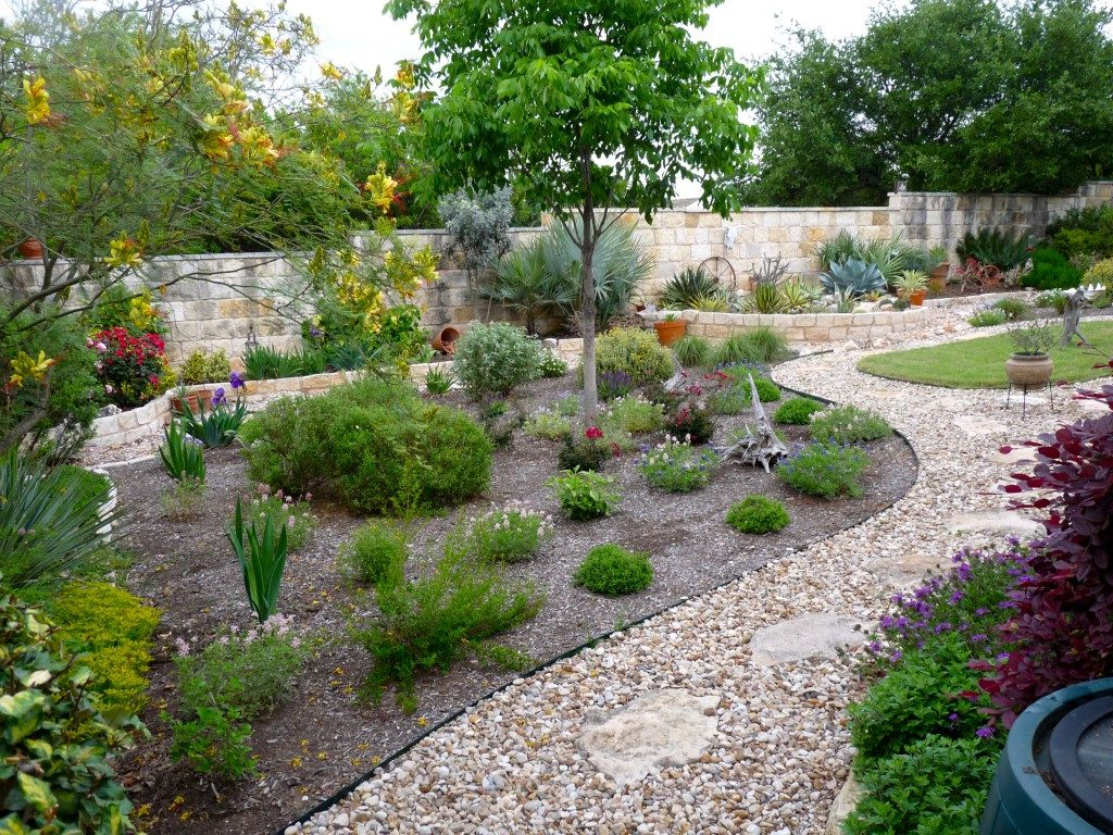 Grapevine Backyard Xeriscaping